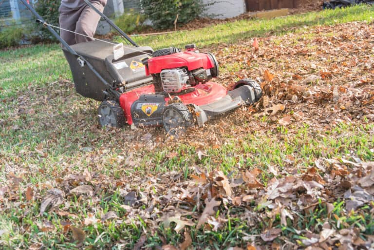 Mulching Grass Clippings