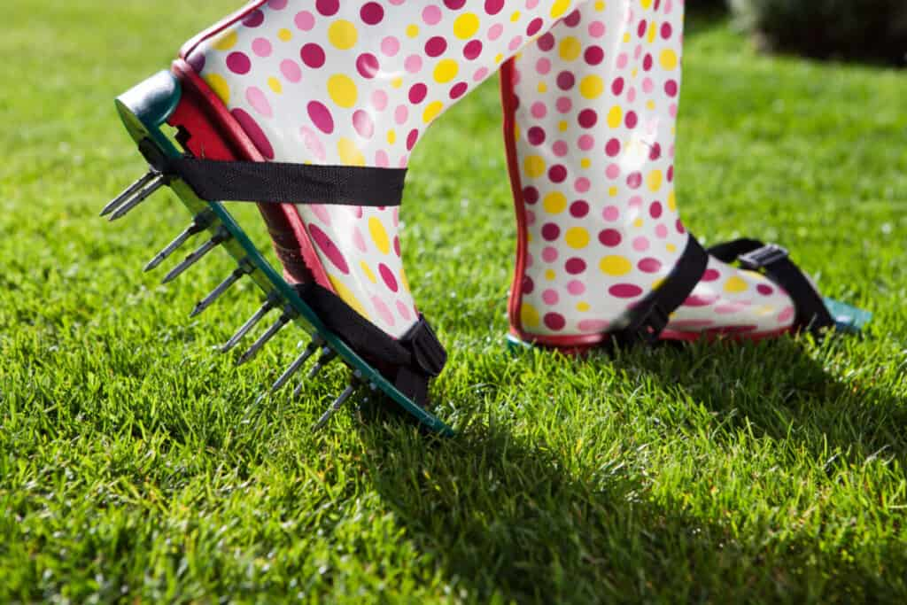 aerating your lawn image