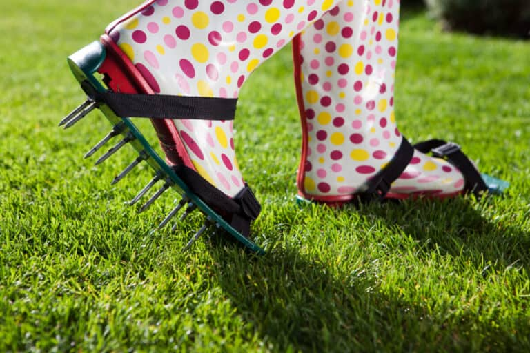 Aerating A Lawn & The Best Lawn Aerators