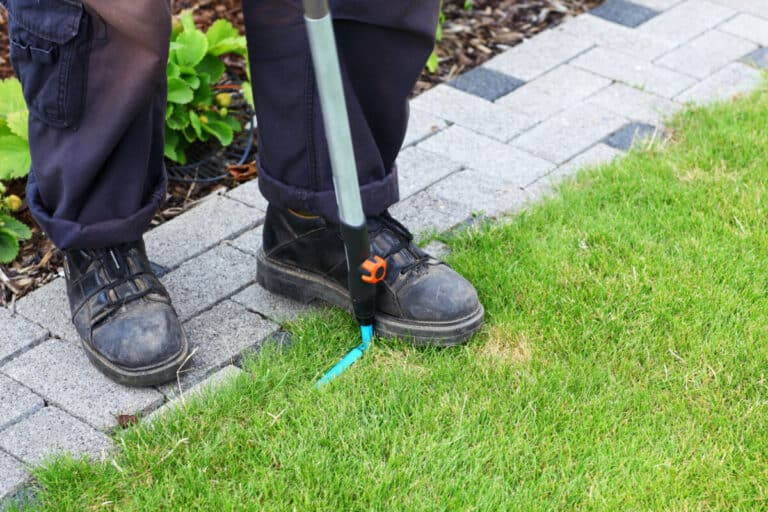 How To Edge A Lawn And Choose The Best Edging Tool