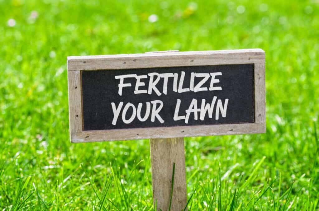 Best Lawn Fertilizer Image