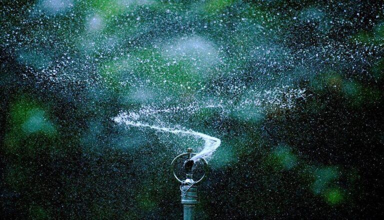 Best Types of Lawn Sprinklers