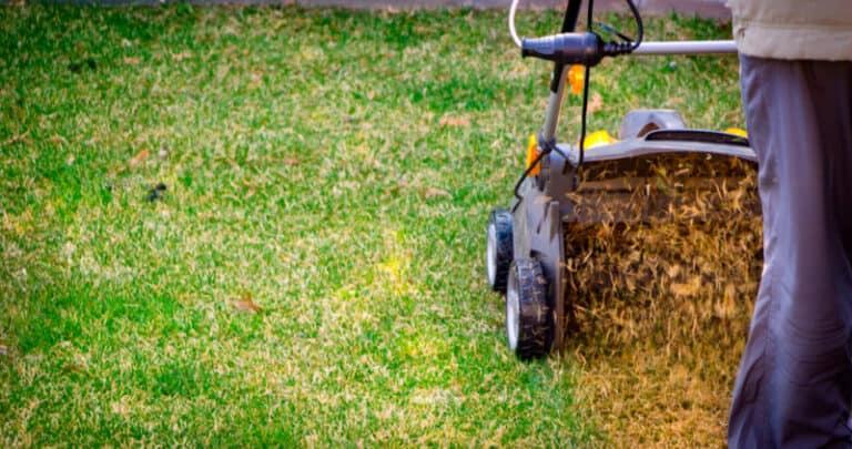 Is Power Raking Good For Lawns?